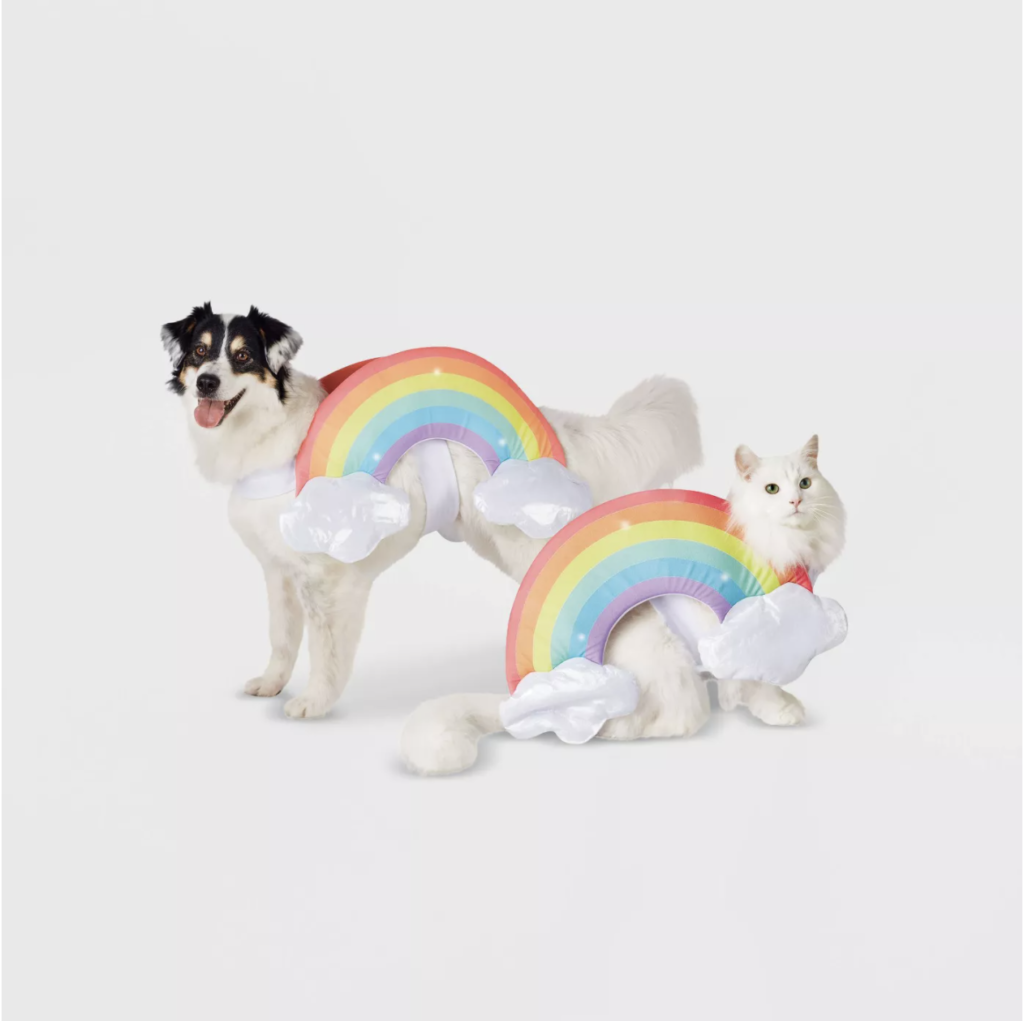 This rainbow getup is the cutest dog or cat costume
