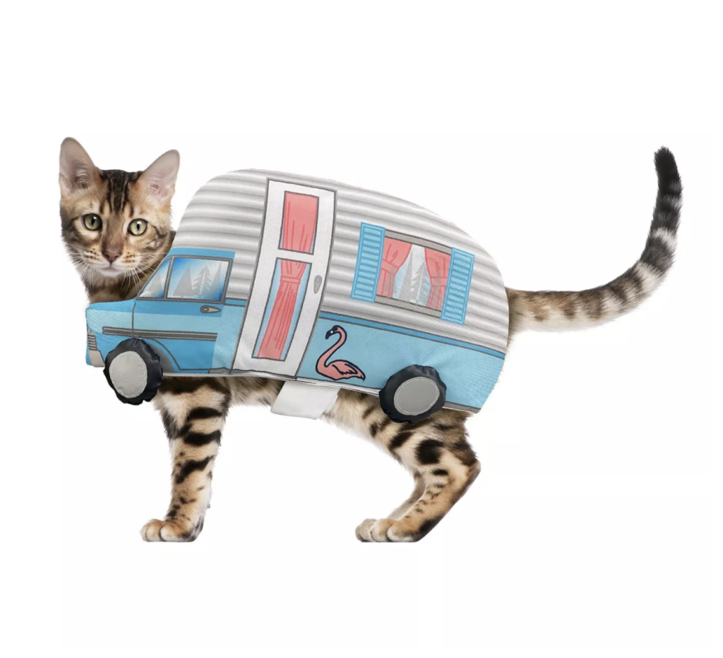 This Retro Camper getup is the cutest cat or dog Halloween costume