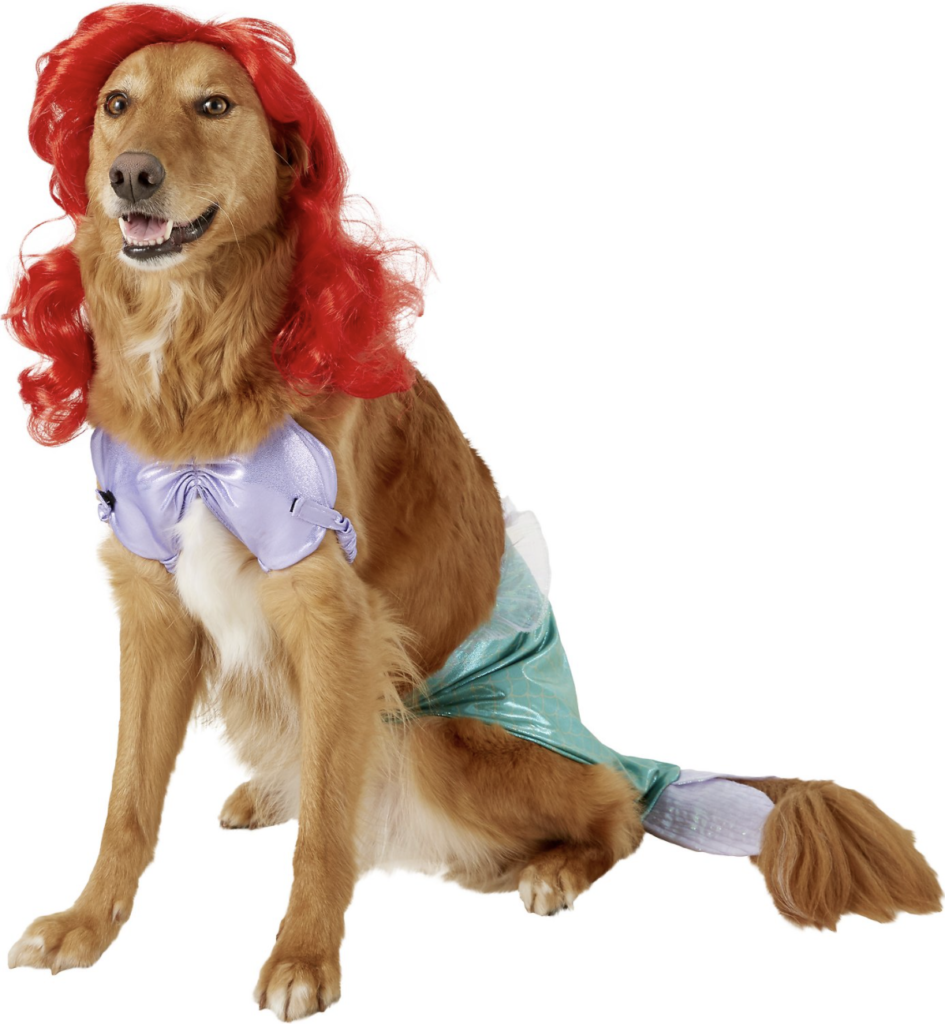 This Ariel Disney Princess getup is the cutest cat or dog Halloween costume