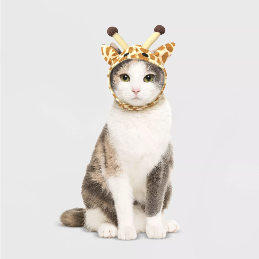 This giraffe hat makes the cutest cat Halloween costume