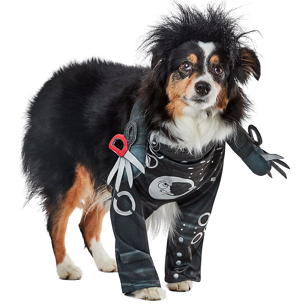 This cool Edward Scissorhands getup makes the cutest pet Halloween costume