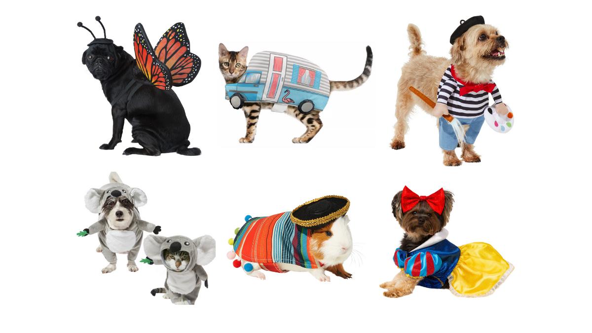 pet Halloween costumes 2021
