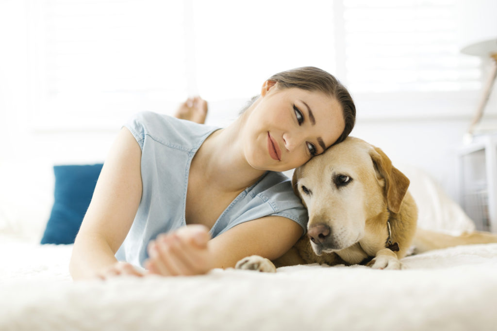 Pet sitting insurance: Benefits, policies and costs