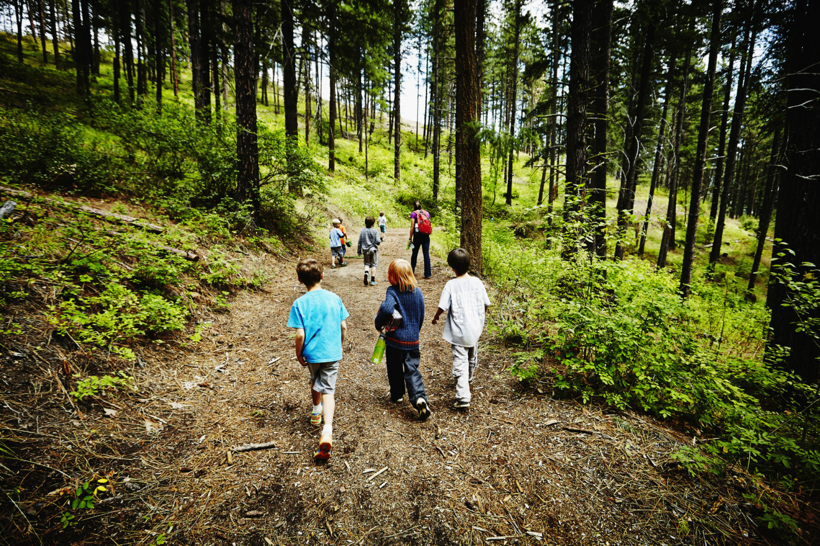 14 free or cheap summer camp options for 2020