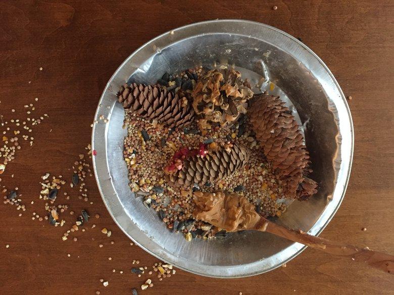 Making a DIY pine cone birdfeeder is a fun after-school craft for kids