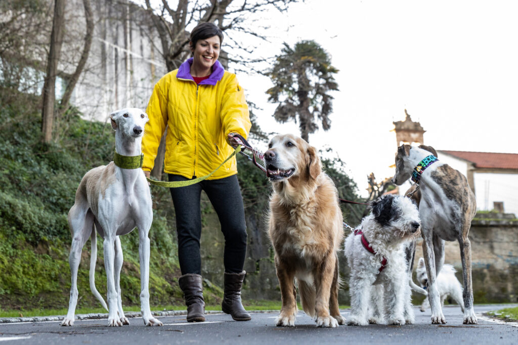 caregiver working a side hustle as a dog walker